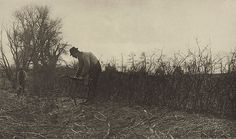 Fencing in Suffolk. EMERSON, PETER HENRY, b.1856-1936. Pictures of East Anglian life, 1888. 16.0 x 26.9 cm. Photogravure