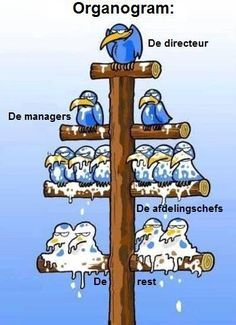 When top level guys look down, they see only shitheads. When bottom level guys look up, they see only assholes. Never seen a Flow Chart described so clearly. Humor Grafico, Work Humor, Best Funny Pictures, Funny Images, Work Pictures, Funny Photos, Smurfs, Funny Jokes, Memes Humor