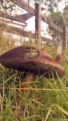 """A """"Magic"""" Mushroom in my garden.."""