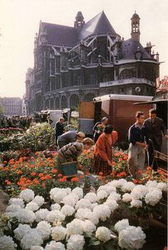 Marché aux Fleurs devant Saint-Eustache ©Willy Ronis, vers 1960