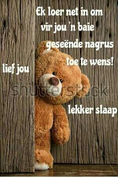 Afrikaans, Good Night, Teddy Bear, Animals, Have A Good Night, Animaux, Animales, Animal, Dieren