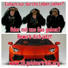 Wir wachsen und wachsen. Sei dabei. #20.Goldvertrieb.org   #PIM #Gold #LinkedIn #Aachen #Oberhausen #Remscheid #Wuppertal #Solingen #deflation #Deutschland #Schweiz #Dortmund #Düsseldorf #Köln #Leverkusen #Frankfurt #berlin #Bremen #Hamburg #München