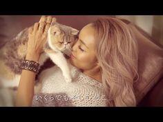 ドラマ「オトナ女子」挿入歌 - Crystal Kay「何度でも」(11/4配信スタート) - 【ドラマセットで撮影!話題の猫「ちくわ」も出演!】 - YouTube