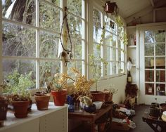 The Sun Room At My Home Oakland, CA 2014