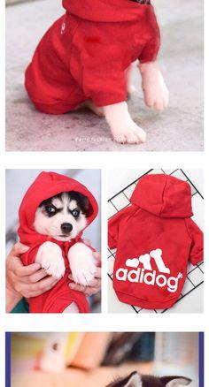 Golden Retriever Love Dog Paw-1 Mens Sleeveless Zipper Hoodie Sweatshirt Gym Jacket