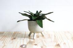 Pot qui marche beige - cache pot - céramique artisanale Pot Plante, Beige, Small Plants, Etsy Crafts, Artisanal, Flower Pots, Planter Pots, Walking, Little Gifts