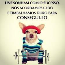 sucesso5