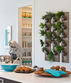 Wall kitchen herb planters. I wonder if I space for this somewhere...