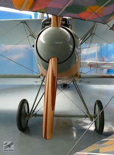 Albatros D.II - The Vintage Aviator Collection