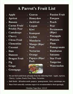 Parrot fruit list