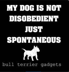 #English #Bullterrier #art