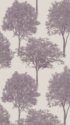 Cheap Wallpaper Woodland Trees - 2 rolls only Heavyweight Wallpaper, Colour:Plum/Grey x repeat Cheap Wallpaper, Tree Wallpaper, Modern Farmhouse Kitchens, Tree Print, Tree Designs, Designer Wallpaper, Pattern Wallpaper, Google Images, Woodland