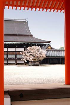 Orange! (Kyoto Palace.)