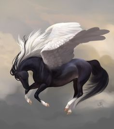 Pegasus - Vrabcak by sforcia Mythical Creatures Art, Magical Creatures, Pegasus, Horse Animation, Winged Horse, Unicorn Pictures, Unicorn Art, Horse Drawings, Anime Animals