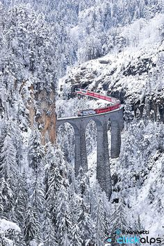 LAndwasser Viadukt in Graubünden Switzerland by Francesco Vaninetti on 500px