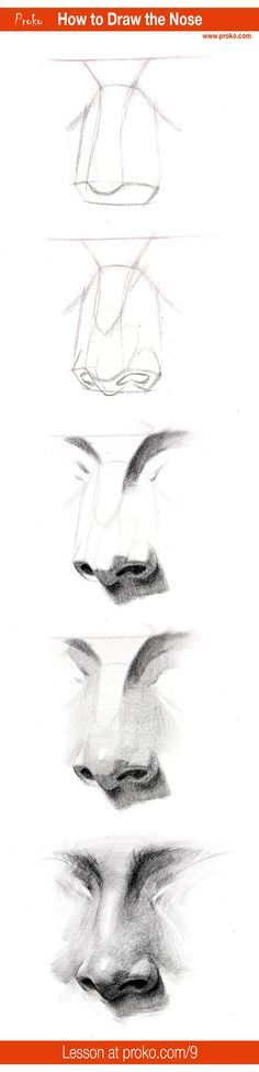 Draw a realistic nose with this step-by-step instruction. Full drawing lesson at proko.com/9
