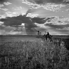Thessaly plain circa 1950 by Voula Papaioannou