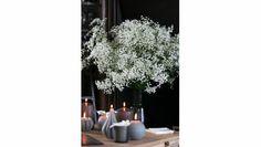 Gypsophile Perfecta (plus gros que le million stars) à petit prix - Bouquet Gypsophile - France Fleurs