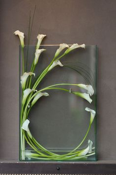 Excellent Absolutely Free Calla Lily ikebana Tips Calla lilies are classified as the perfect bride's bouquet flower. The particular lights of this A Arte Floral, Deco Floral, Ikebana, Calla Lily Wedding, Wedding Flowers, Green Wedding, Wedding Colors, Fleur Design, Calla Lillies
