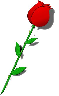red rose bud image with transparent background Flower Clipart Images, Flower Art Images, Rose Clipart, Rose Bud Image, Sunflower Clipart, How To Make Drawing, Balloon Flowers, Parts Of A Plant, Clipart Black And White