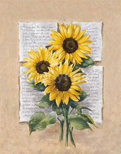 Sunflower Poetry Art Print by Laura Martinelli