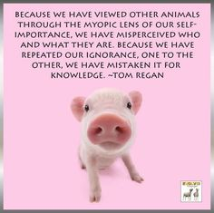 Because we have viewed other animals through the myopic lens of our self-importance, we have misperceived who and what they are. Because we have repeated our ignorance, one to the other, we have mistaken it for knowledge. ~Tom Regan