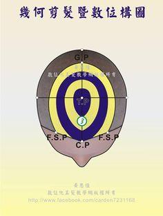 橫髮片劃分(Horizontal parting)在第3設計區的構圖-頂面呈現