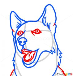 How to Draw Husky face, Dogs and Puppies