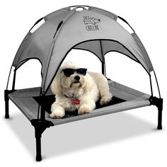 Floppy Dawg Just Chillin' Elevated Dog Bed. Medium and Large Size Dog Cots in a Variety of Colors. Removable Canopy for Indoor or Outdoor Use. Lightweight and Portable. Let Your Dog Chill in Style. Cute Dog Beds, Cute Dogs, Pet Beds, Funny Dogs, Popsugar, Digging Dogs, Dog Tent, Elevated Dog Bed, Dog Cots