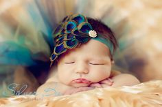This has to be THE best peacock themed newborn pic - beautiful!