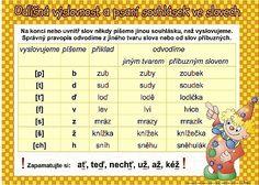 Odlišná výslovnost a psaní souhlásek ve slovech