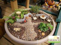 Fairy Garden   DETAILS IN SHAPING DETAILS