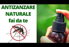SPRAY ANTI ZANZARE NATURALE FAI DA TE