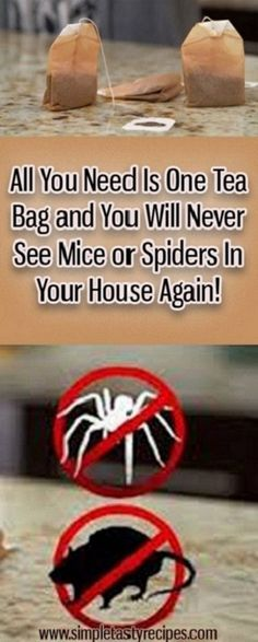 All You Need Is One Tea Bag and You Will Never See Mice or Spiders In Your House… – The Environmental Alternative For Safer Pest Control Cleaning Solutions, Cleaning Hacks, Cleaning Products, Cleaning Recipes, All You Need Is, Just In Case, Getting Rid Of Mice, Guter Rat, Simple Life Hacks