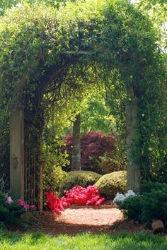 Gate to 'secret garden'
