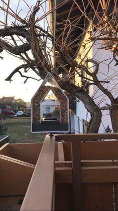 Wir lieben unser EMSA Futtersilo im Landhausstil! Es ist ein schönes Projekt für die gesamte Familie. Das EMSA Futtersilo im Landhausstil sieht nicht nur schön aus sondern ist sehr durchdacht. Es hat vielseitige Befestigungsmöglichkeiten: - Loch im Giebel das Futtersilos - Schlaufe oben am Dach - durch das versteckte Loch im Boden - durch den zusätzlichen Halter in Rohren, Ästen oder Balkonbrüstungen Das EMSA Futtersilo im Landhausstil lässt sich sehr gut Befüllen und Reinigen. Dafür kann…