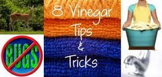 8 Vinegar tips & tricks. http://www.somewhatsimple.com/8-tips-for-using-vinegar