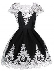 Lace Panel Vintage Fit and Flare Dress - BLACK