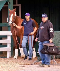 California Chrome leaving Maryland for New York preparing for the Belmont 5/20/2014