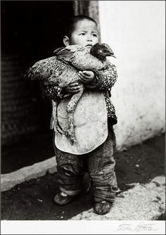Boy with chicken, Hanjao, China, 1946 by Arthur Rothstein. S)