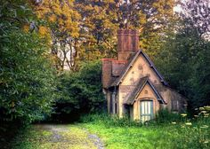 Somewhere in England, my little dream cottage is nestled in the woods.