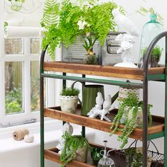 Lovely Plant Bench Idea | Growing | Pinterest | Garden Shelves, Herbs Garden And  Plants