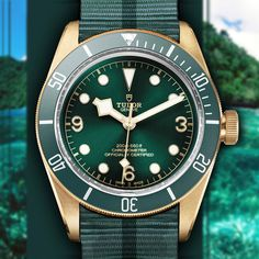 A green Tudor Heritage Black Bay Bronze at Baselworld this year? Dream Watches, Luxury Watches, Rolex Watches, Watches For Men, Tudor Black Bay Bronze, Tudor Bronze, Best Looking Watches, Amazing Watches, Tudor Heritage Black Bay