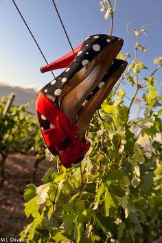 Los zapatos de Isabel