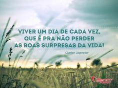 Viver um dia de cada vez, que é pra não perder as boas surpresas da vida! #viver #dia #surpresa #vida