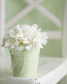 White flowers white bow