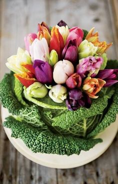 Lovely Spring floral arrangement of tulips in the center of a head of a cabbage type vegetable. Love Flowers, Fresh Flowers, Spring Flowers, Beautiful Flowers, Easter Flowers, Table Flowers, Beautiful Gorgeous, Floral Flowers, Spring Flower Arrangements