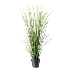 FEJKA Plante artificielle en pot IKEA Plante artificielle qui apporte une touche de fraîcheur année après année.
