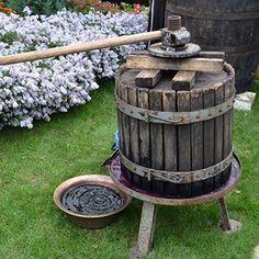 Domestic Wine Press in Buticeni Village, central Moldova