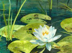 "Artist: Elaine Ferdinandi, Titled: ""Water Beauty"""